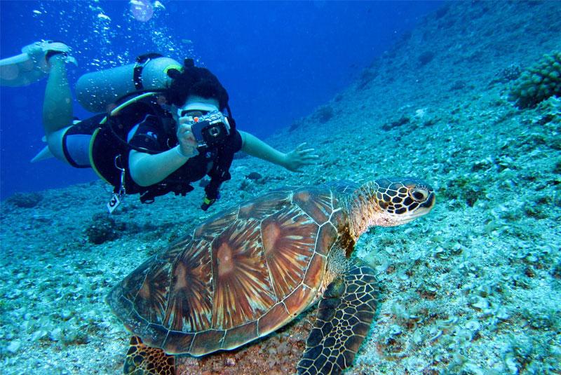 Scuba Diving in Australia – Essential Tips